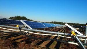 ソーラーシェアリング 太陽光発電とブルーベリー